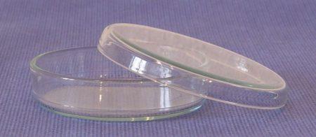 Petricsésze, üveg,  60*15 mm